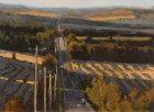 Paintings By Susan Woolgar